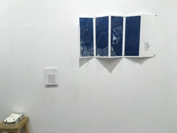 Alexis Diaz Belmar, Paisajes Liminales