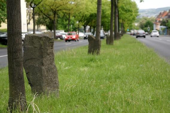 7000 eichen in Kassel